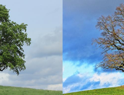 Prechodové obdobie z leta do jesene